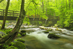 Kephart Prong Trail Bridge, Oconaluftee River, Great Smoky Mountains National Park, North Carolina, USA