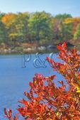 Crater Lake, Kittatinny Mountain near the Appalachian Trail, Delaware Water Gap National Recreation Area, New Jersey