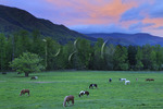 Cades Cove at Sunrise, Great Smoky Mountains National Park, Tennessee, USA