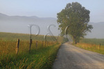 Hyatt Lane, Cades Cove, Great Smoky Mountains National Park, Tennessee, USA