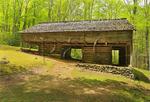 John Messer Farm, Porters Creek Trail, Greenbrier Area, Great Smoky Mountains National Park, Tennessee, USA