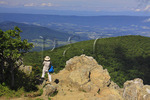 Hawksbill Near the Appalachian Trail, Shenandoah National Park, Virginia, USA