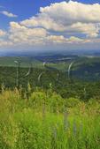 Peidmont Seen From Hogwallow Flats Overlook, Shenandoah National Park, Virginia, USA