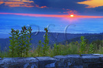 Milkweed at Sunset, Riprap Overlook, Shenandoah National, Park Virginia, Virginia, USA