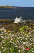 East Point Sanctuary, Wood Island Lighthouse, Biddeford Pool, Maine, USA