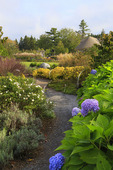 Rose and Perennial Garden, Coastal Maine Botanical Gardens, Boothbay, Maine, USA