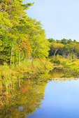Penny lake Preserve, Boothbay Harbor, Maine, USA