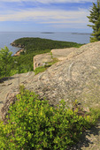 Otter Cliff seen from Gorham Mountain Trail, Acadia National Park, Maine, USA