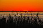 Sunrise, Blueberry Hill, Schoodic Peninsula, Acadia National Park, Maine, USA