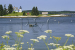 Pumpkin Island Lighthouse, Eggemoggin, Maine. USA