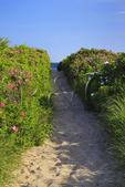 Path to Beach, Parsons, Beach, Kennebunkport, Maine, USA