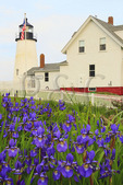 Pemaquid Point, Lighthouse, Pemaquid Lighthouse Park, New Harbor, Maine, USA