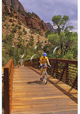 Bridge on Virgin River Bike Trail, Zion National Park, Utah