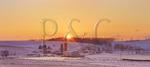 Winter Morning, Swoope, Virginia, USA