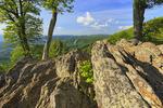 Jewell Ridge, Shenandoah National Park, Virginia, USA