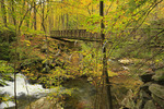 Bridge, Lynn Camp Prong, Middle Prong Trail, Tremont, Great Smoky Mountains National Park, Tennessee, USA