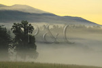 Morning in Cades Cove, Great Smoky Mountains National Park, Tennessee, USA