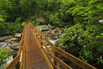 Footbridge, Chimney Tops Trail, Greenbrier Area, Great Smoky Mountains National Park, Tennessee, USA