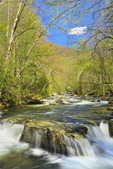 Little River, Trail, Elkmont Area, Great Smoky Mountains National Park, Tennessee, USA