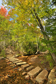 Little Harbor Brook, Asticou and Jordan Pond Trail, Acadia National Park, Maine, USA