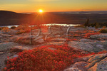 Sunset, Cadillac Mountain, Acadia National Park, Maine, USA