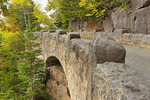 Cliffside Bridge, Jordan Stream Loop Carriage Road, Acadia National Park, Maine, USA