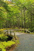One of the Seven Bridges, Near Carriage Road Post 10, Acadia National Park, Maine, USA