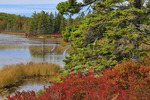 Aunt Betty's Pond, Carriage Road Near Post 11, Acadia National Park, Mount Desert Island, Maine, USA