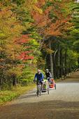 Carriage Road near Eagle Lake, Acadia National Park, Maine, USA