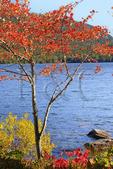 Eagle Lake, Acadia National Park, Maine, USA