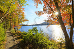 Along Jordan Pond Shore Trail, Acadia National Park, Maine, USA
