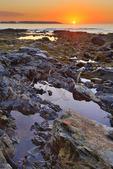 Sunrise, Seawall, Acadia National Park, Maine, USA