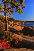 Sunrise, The Ocean Trail, Acadia National Park, Maine, USA