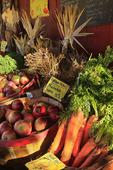 Schoolhouse Farm Roadside Produce Stand, Warren, Maine, USA