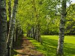 Saint_Gaudens National Historic Site, Cornish, New Hampshire, USA