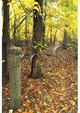 Trail Marker, Blackrock Mountain, Appalachian Trai, Shenandoah National Park, Virginial
