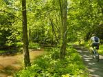 Straight Branch, .Whitetop Laurel Creek, Virginia Creeper Trail, Damascus, Virginia, USA