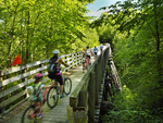 Trestle 46, Virginia Creeper Trail, Damascus, Virginia, USA