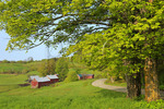 Jenne Farm In Spring, South Woodstock, Vermont