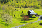 Farm on Pomfret Road, Woodstock, Vermont, USA