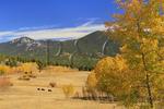 Peak to Peak Highway Near Black Hawk, Colorado, USA