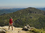 Harney Peak Trail No. 9. Black Elk Wilderness, Custer State Park, Black Hills, Rapid City, South Dakota, USA
