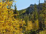 Harney Peak Trail, Custer State Park, Black Hills, Rapid City, South Dakota, USA