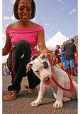 African American Heritage Festival, Staunton, Virginia