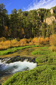 Little Spearfish Creek, Spearfish Canyon, Black Hills, Savoy, South Dakota, USA