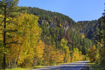 Spearfish Canyon, Black Hills, Spearfish, South Dakota, USA