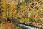 Long Valley Picnic Area, Spearfish Creek, Spearfish Canyon, Black Hills, Spearfish, South Dakota, USA