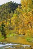 Spearfish Creek, Spearfish Canyon, Spearfish, South Dakota, USA