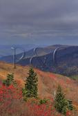On Black Balsum Knob, Art Loeb Trail, Blue Ridge Parkway, North Carolina, USA