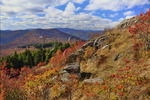 South of Black Balsum Knob, Art Loeb Trail, Blue Ridge Parkway, North Carolina, USA